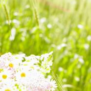 Was trägt man im Frühling 2012? Frühlingsmode und Trends